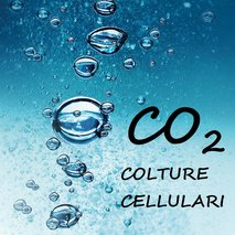 CO2 DM COLTURE CELLULARI
